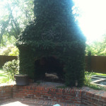 outdoor fireplace covered in ivy